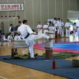 kyokushin 2-1
