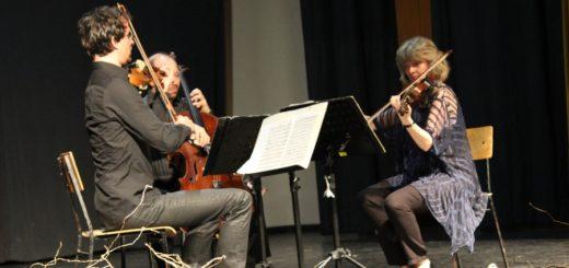 festival klasične glazbe 5